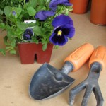 5 tips for gardening with preschoolers