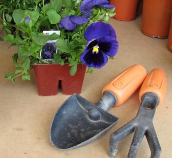 Gardening with Preschoolers