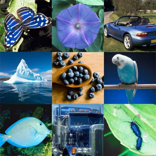 Things That Are Blue Projects For Preschoolers