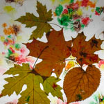 leaf stained glas craft