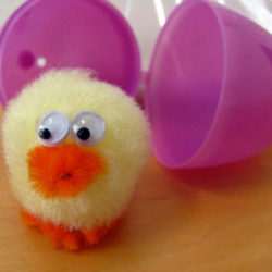 Cute and fuzzy chick craft