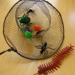 Make a bug or butterfly net