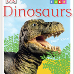 Read Let's Look: Dinosaurs
