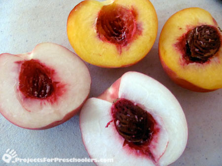 White and yellow peaches