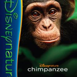 Disneynature's Chimpanzee activity pages
