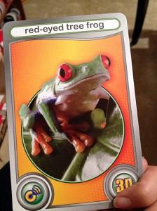 Cypher Kids Club frog card