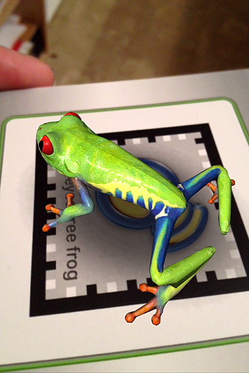 Frog on the card
