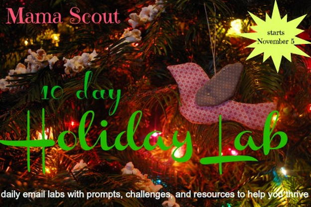 Holiday elab giveaway at MamaScout